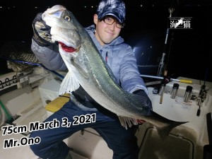 21-03-04-09-21-20-562_deco_copy_800x600