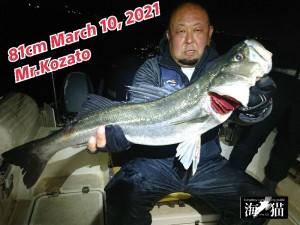 21-03-11-09-50-41-027_deco