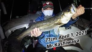 21-04-03-16-28-07-358_deco