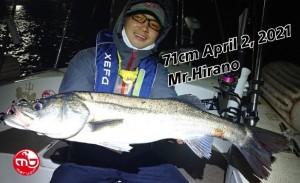 21-04-03-16-36-27-000_deco_copy_800x489