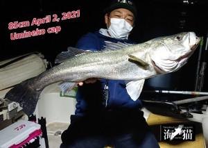 21-04-03-16-39-14-331_deco_copy_800x570