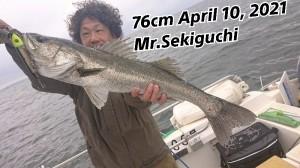 21-04-14-08-05-32-874_deco