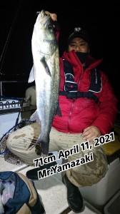 21-04-15-06-55-19-382_deco