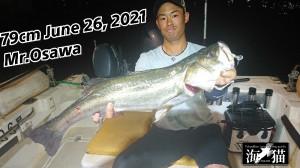 21-06-28-22-28-22-465_deco