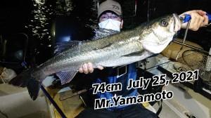 21-07-25-21-22-47-946_deco